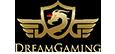 dream gaming logo big