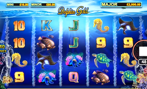 slot dolphins gold